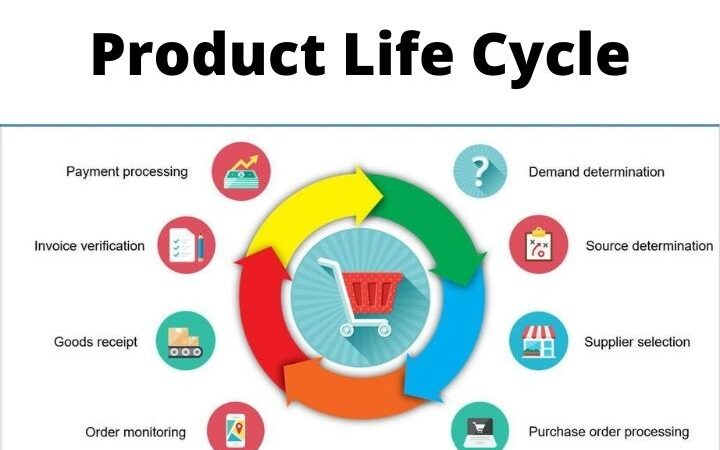 What Is The Life Cycle Of A Product? Different Stages Of Product Life Cycle