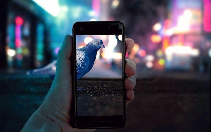 Top 5 Best Camera Mobiles Of 2020