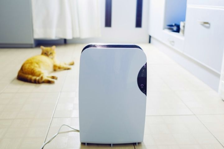What Are Best Air Purifiers for Home?