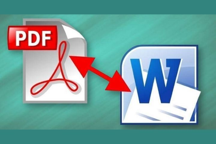 PDF To Word: 4 Useful Features Of The PDF Bear Converter