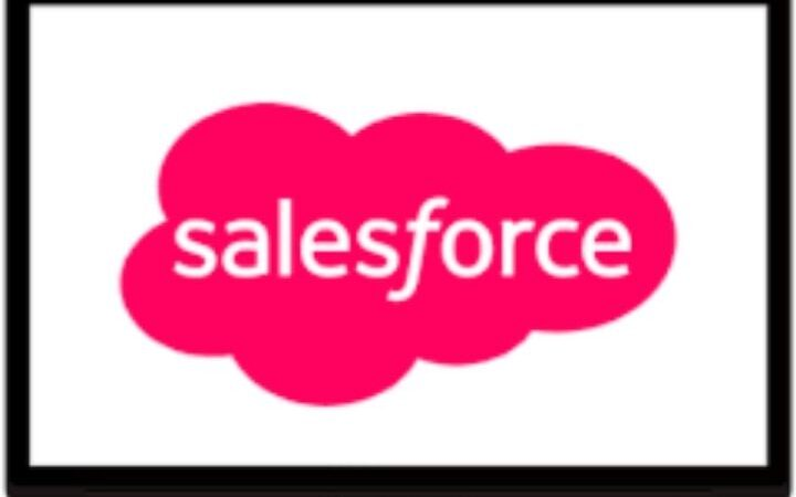 What Are The Functions Of The Salesforce?