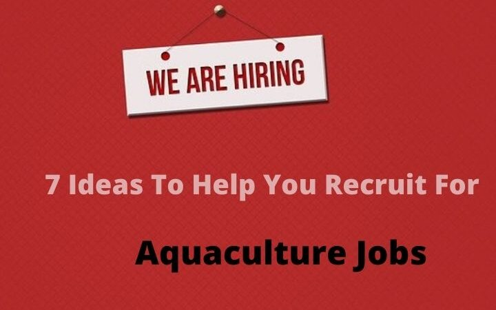 7 Ideas To Help You Recruit For Aquaculture Jobs